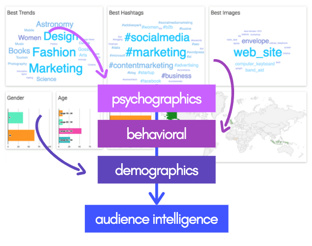 audience intelligence behaviors demographics and psychographics